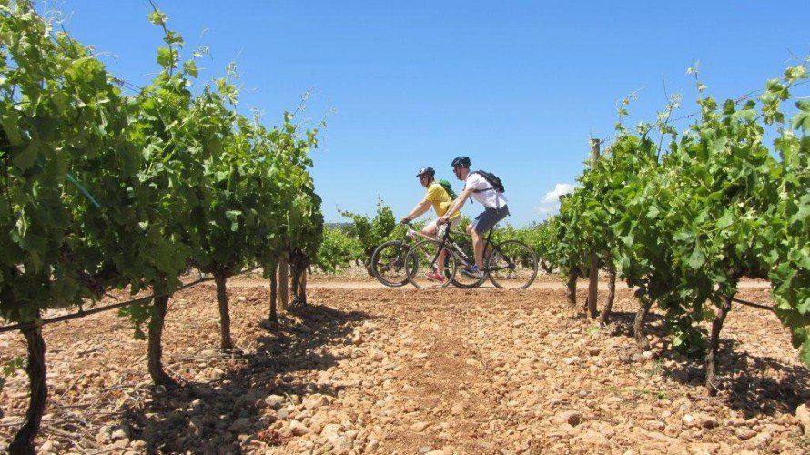 mallorca-wine-tours-bike-tour-07