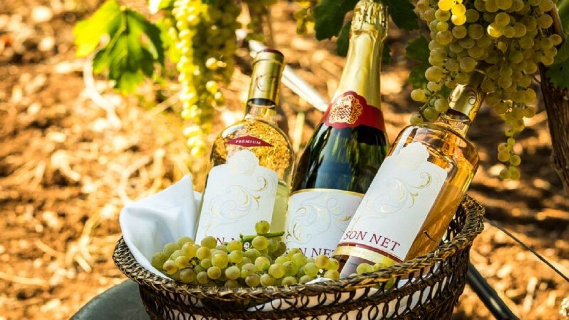 Sip a glass of Gran Hotel Son Net wines