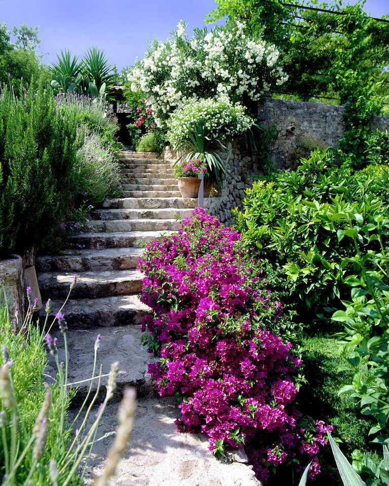 Pathways in the gardens - Can Verdera Fornalutx Mallorca