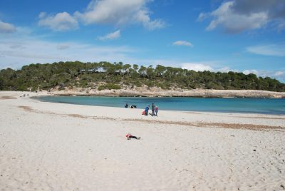 Bounty of Mallorca's beaches