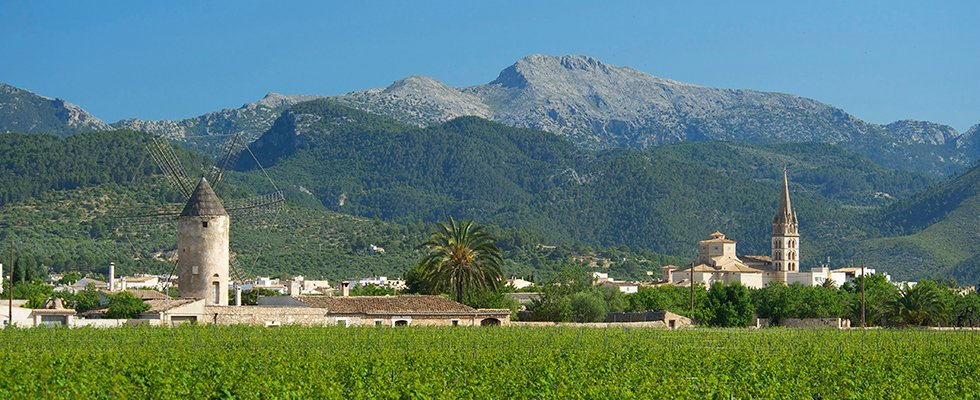 The village of Binissalem Majorca Wine Festival
