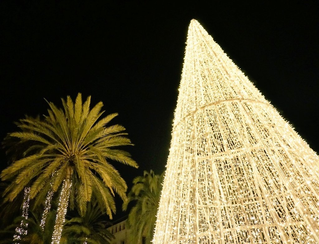 Christmas tree in front of La Seu Cathedral in Palma