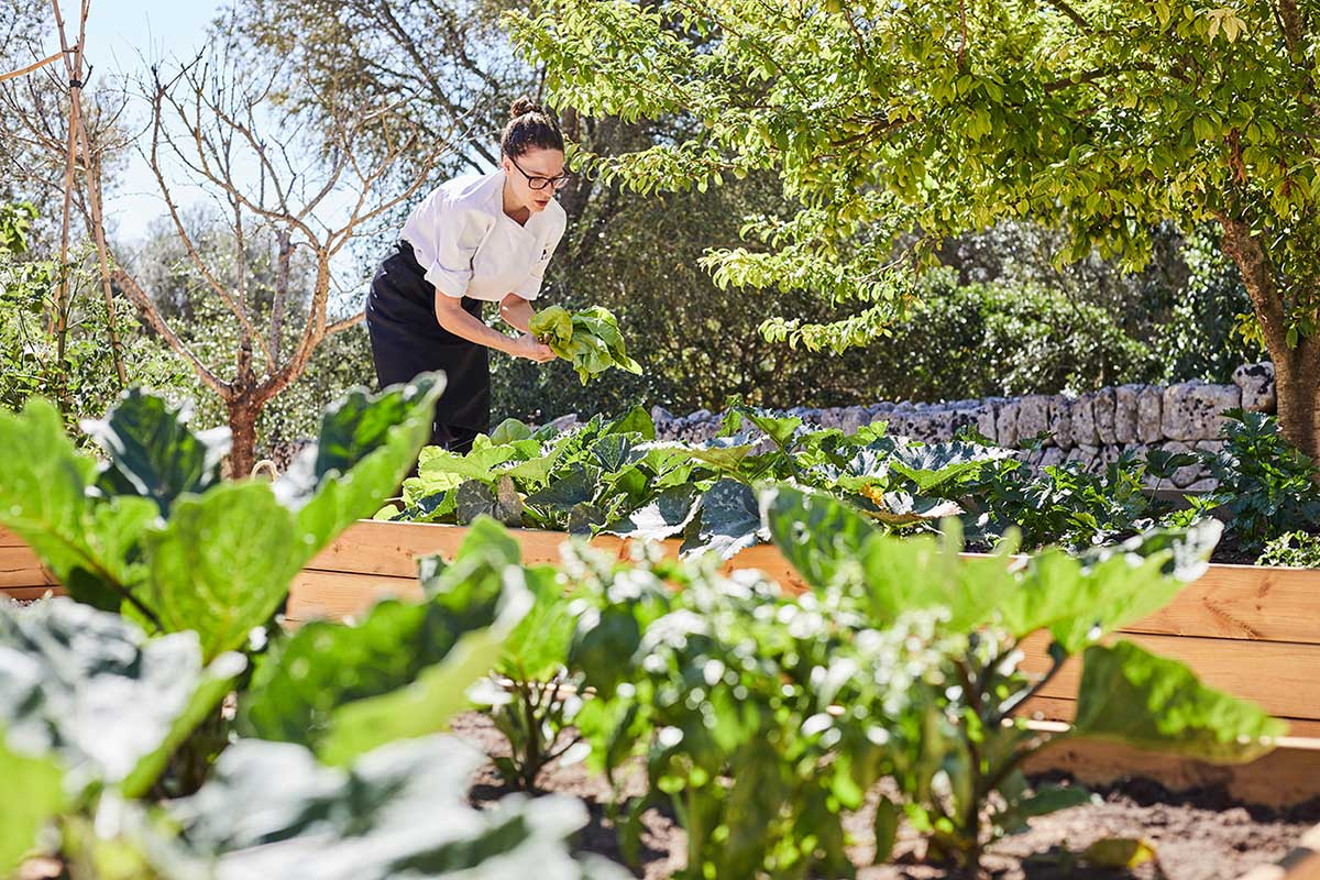 Finca Serena Kitchen Garden - Mallorca Luxury Hotels